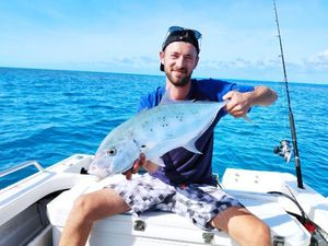 Yellowspoted Trevally — Pils Mc