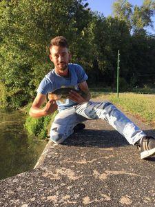 Smallmouth Bass — Morgan Trouvat
