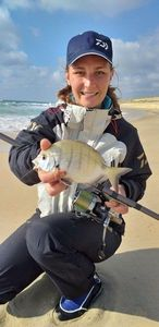 White Seabream — Manon Mainvis