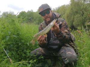 Northern Pike — Mickael Bignolais