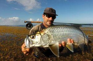 Tarpon — Guillaume pêche Guadeloupe
