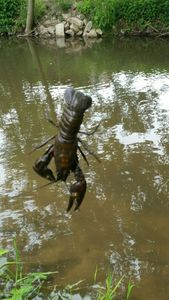 Noble Crayfish — Scary Fishing