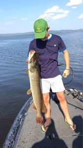 Northern Pike — Achille Delhaize