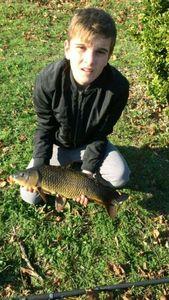 Common Carp — Lucas Loiret
