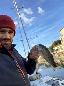 Largemouth Bass — Clement Costa