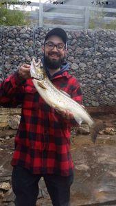 Ouananiche Salmon