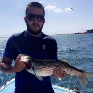 European Bass — Jordan Pincemin