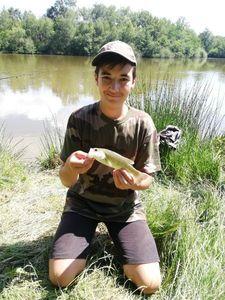Smallmouth Bass — Natan Ailloud Buthion