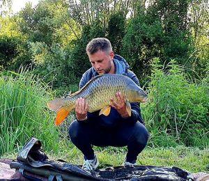 Common Carp — Benjamin Douvillé