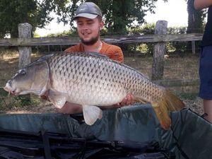 Common Carp — Romain Lachize