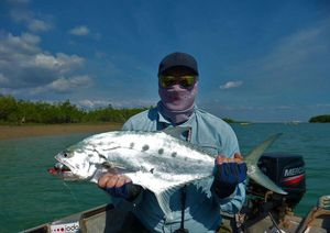Talang Queenfish