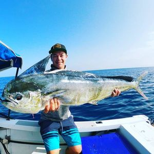 Dolphinfish — Tom Legros