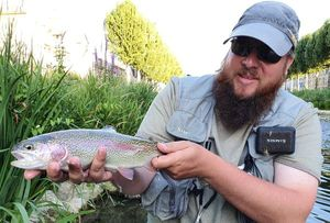 Rainbow Trout — Laurent Picard