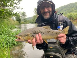 Brown Trout — Yannick JOUAN, WFFT