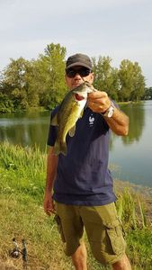 Largemouth Bass — Jean-Leandre Montero
