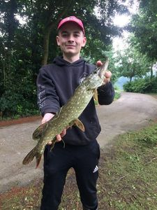 Northern Pike — Corentin Schoendorf