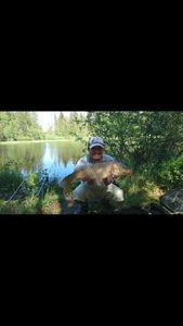 Common Carp — Fishing Vortex