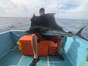 Pacific Sailfish — Julien Perol