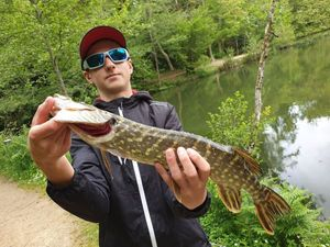 Northern Pike — Esteban Garbay