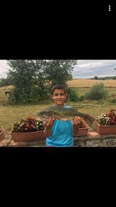 Largemouth Bass — gaillard aurélien
