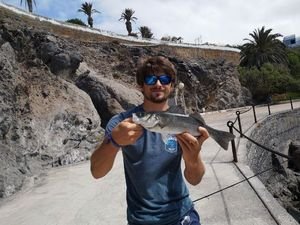 European Bass — Guillaume Dumarest