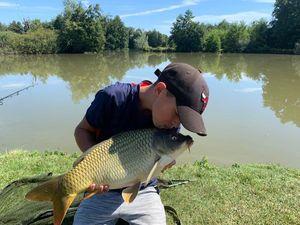 Common Carp — Fish tim