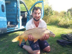 Common Carp — William  Monfort