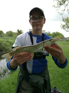Northern Pike — Kylian Brunelliere