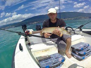 Northern Pike — Lucas Zampi