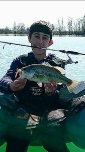 Largemouth Bass — Maxime Eustache