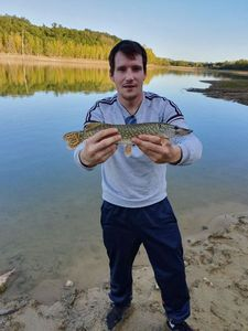 Northern Pike — Loic Cathalo