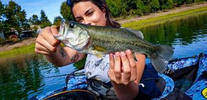 Largemouth Bass — Tacos Boy's Girl