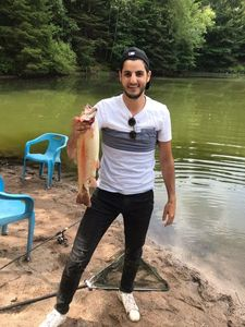 Golden Trout — Gad Levy