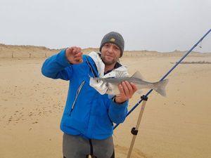 European Bass — Cyr Eclair