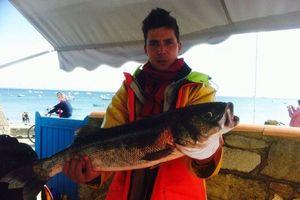 European Bass — Maxime Malotaux