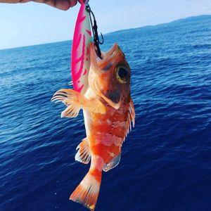Redfish — Adrien Di Blasi
