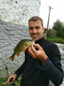 European Perch — Thibaut Troopers