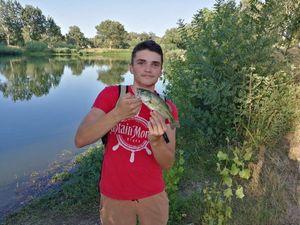 Smallmouth Bass — Malko Chavot