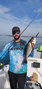 European Bass — Charles Bella_fish_on