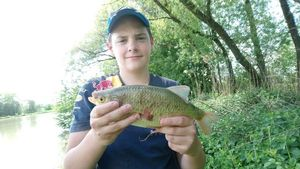 Common Bream — Maxime Cherrier