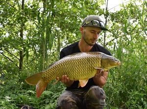 Common Carp — Brooks CarpFishing