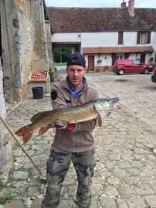 Northern Pike — Florian Olivier