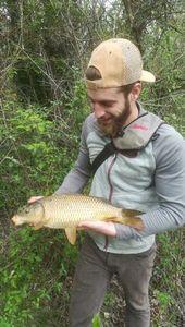 Common Carp — Alexandre Chauvet
