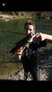 Black Bass (Achigan à Grande Bouche) — Mathis Roche