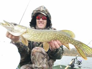 Northern Pike — Stephane Moreaux