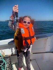 Ballan Wrasse — Aventure Pêche Bretagne APB
