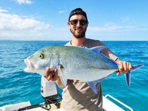 Bluefin Trevally — Pils Mc