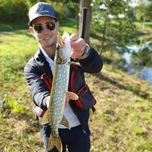 Northern Pike — Vincent Copaing