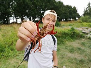 Noble Crayfish — water fishing