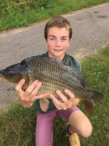 Common Carp — Jules Le Boucher